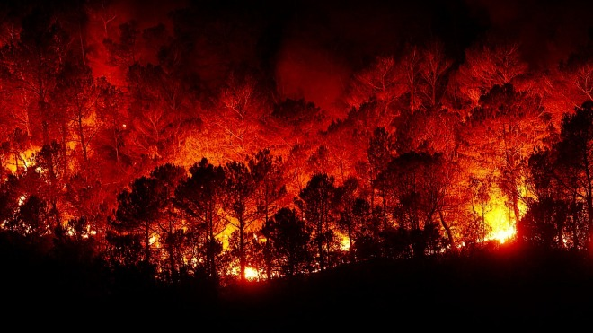 forest-fires-2930096_1280