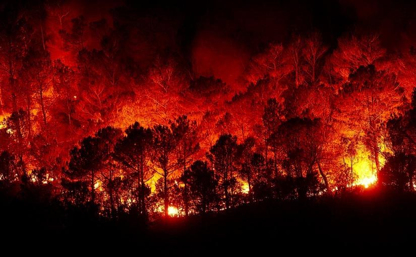 翻譯新聞─人類只剩下12年時間,改善全球氣候變遷所造成的災難